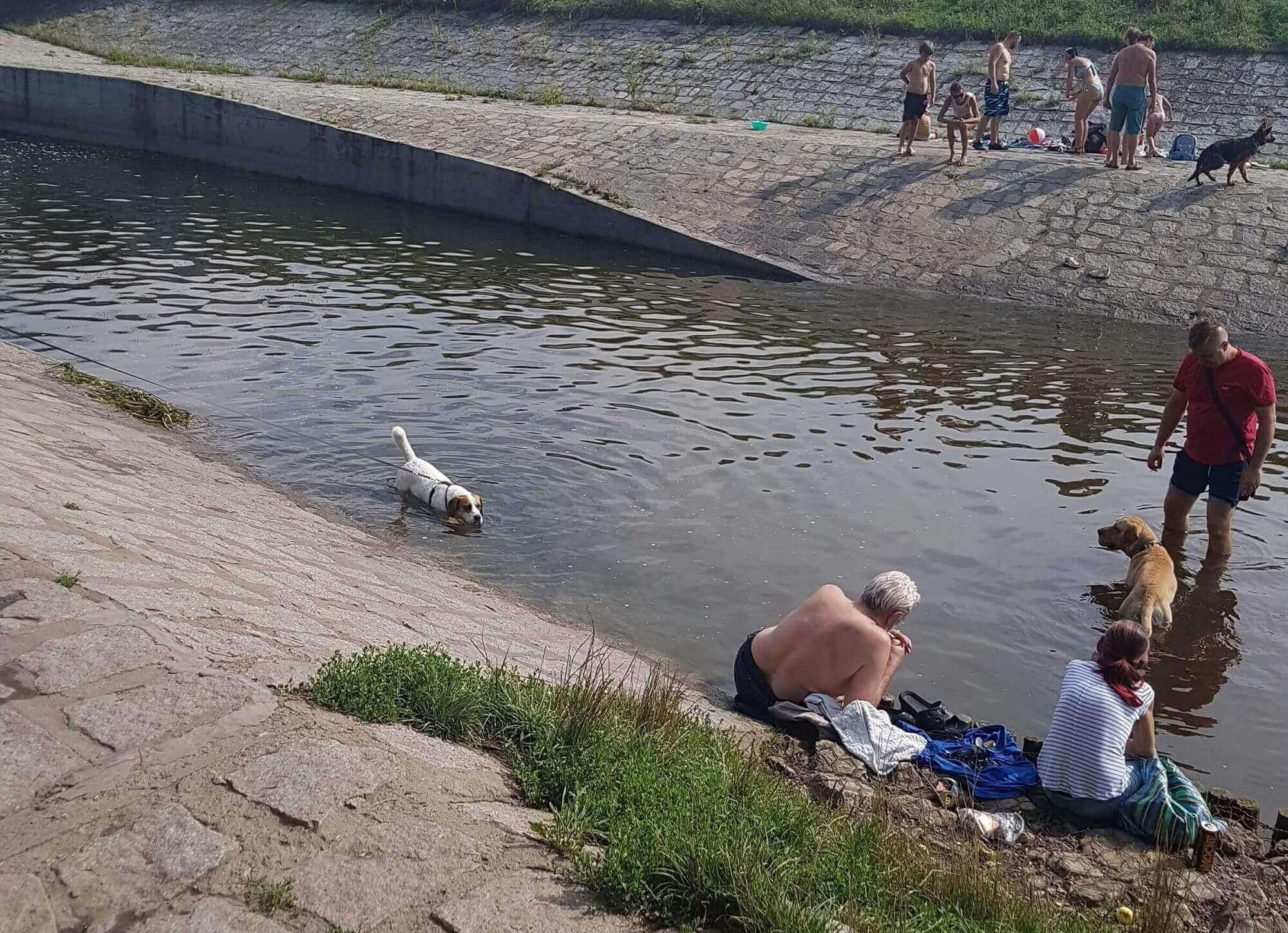 najfajniejsze miejsca we wrocławiu: rzeka